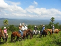 horse-riding-page-photo